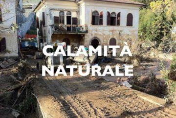 calamita_5